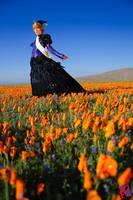 In a sea of orange by Shiya
