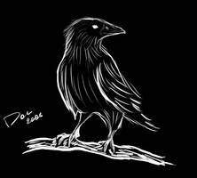 Crow by Totogasm