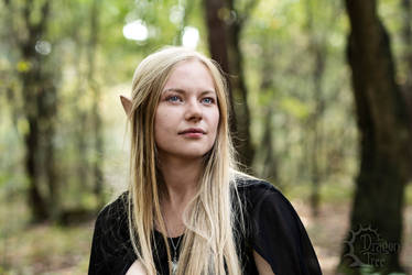High elf [3] by Dyjanna