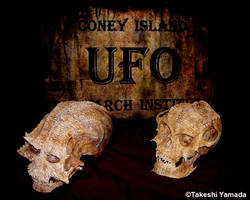 Space Alien Skulls (Dr. Takeshi Yamada) by searabbit23