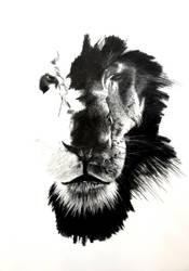 Lion by LilaaLeluu
