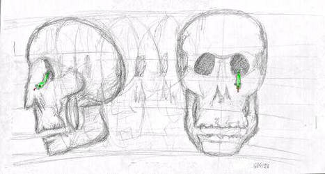 Sketch of a skull by jbdevart