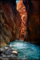 Zion National Park II by kimjew