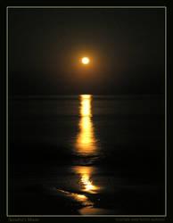 Sandra's Moonrise by renaissanceman3