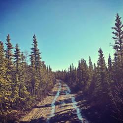 Brisk Morning on Stampede Trail by elation-station