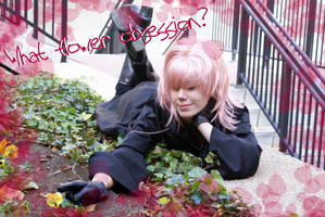 Marluxia and His Flowers by 0-Portal-0