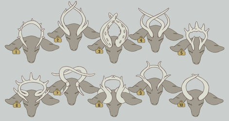 Halo Deer Antler Examples by Saycha-Designs