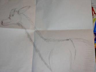 Adult Lunar Dragon me by lugiayoshi