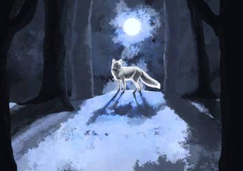 Silver Fox by LacernellaRubra