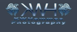 KWH Photo Elegant Glass Style by kwhammes
