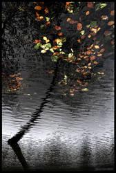 Leaves UnFallen by DanielZrno
