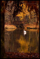 Song of Autumn by DanielZrno
