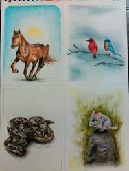 4 Animals by magnifulouschicken