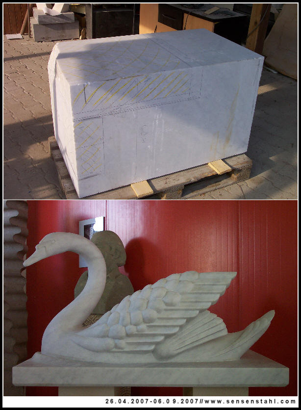 the swan by duesterheit