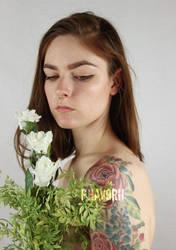 Roses by Phavorii