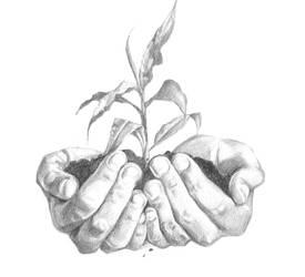 Hands by Minuiko