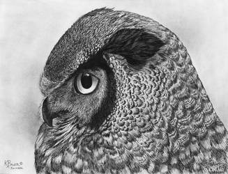 Great Horned Owl by kbauerart