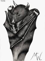 Meine kleine Fledermaus by CyberPiranha