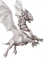 Pencil Armored dragon by Amayensis