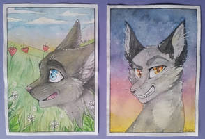 Distelbluete and Sommerfrost | WarriorCats by Foxface-x3