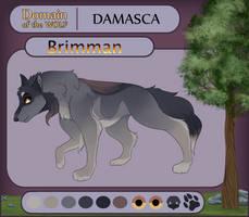 Brimman || DOTW || Damasca Omega by chimeraoncaffeine