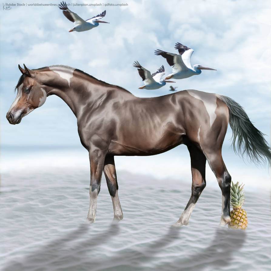 Undecided-~-Bay-Arab-in-Desert-(Full-Size) by KeonahN