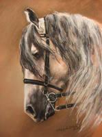 Horse 19 by Nagareth