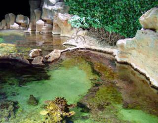 Hidden Laguna by neogene