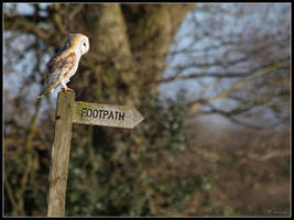 FOOTPATH by cycoze