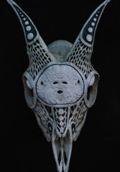 Carved baby goat skull, Gorgon by VictorSeiche