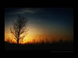 Autumn sun by ferrohanc