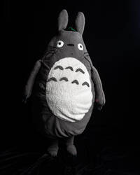 Totoro Cosplay 2018 Hal-con by lyiint