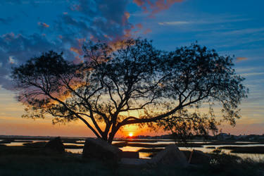 Wildlife Reserve by osagelady