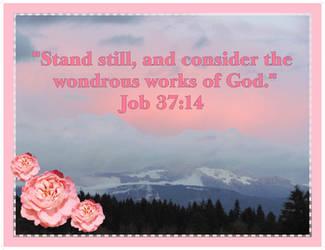 Job 37:14 Pink Sunset by joyrascal