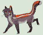cat design for sale (READ RULES) by homeqrown