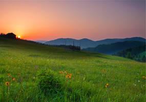 Sunrise by lica20