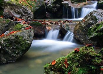 Between water by lica20