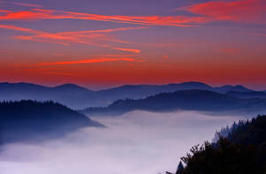 Landscape with Fog. by lica20