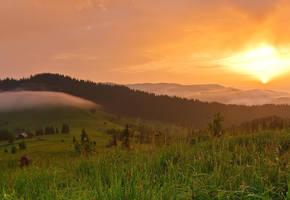 Bukovina summer 2 by lica20