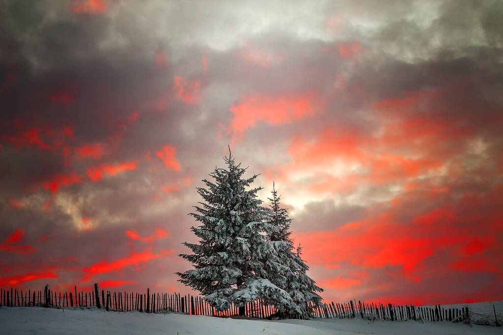 Winter story by lica20