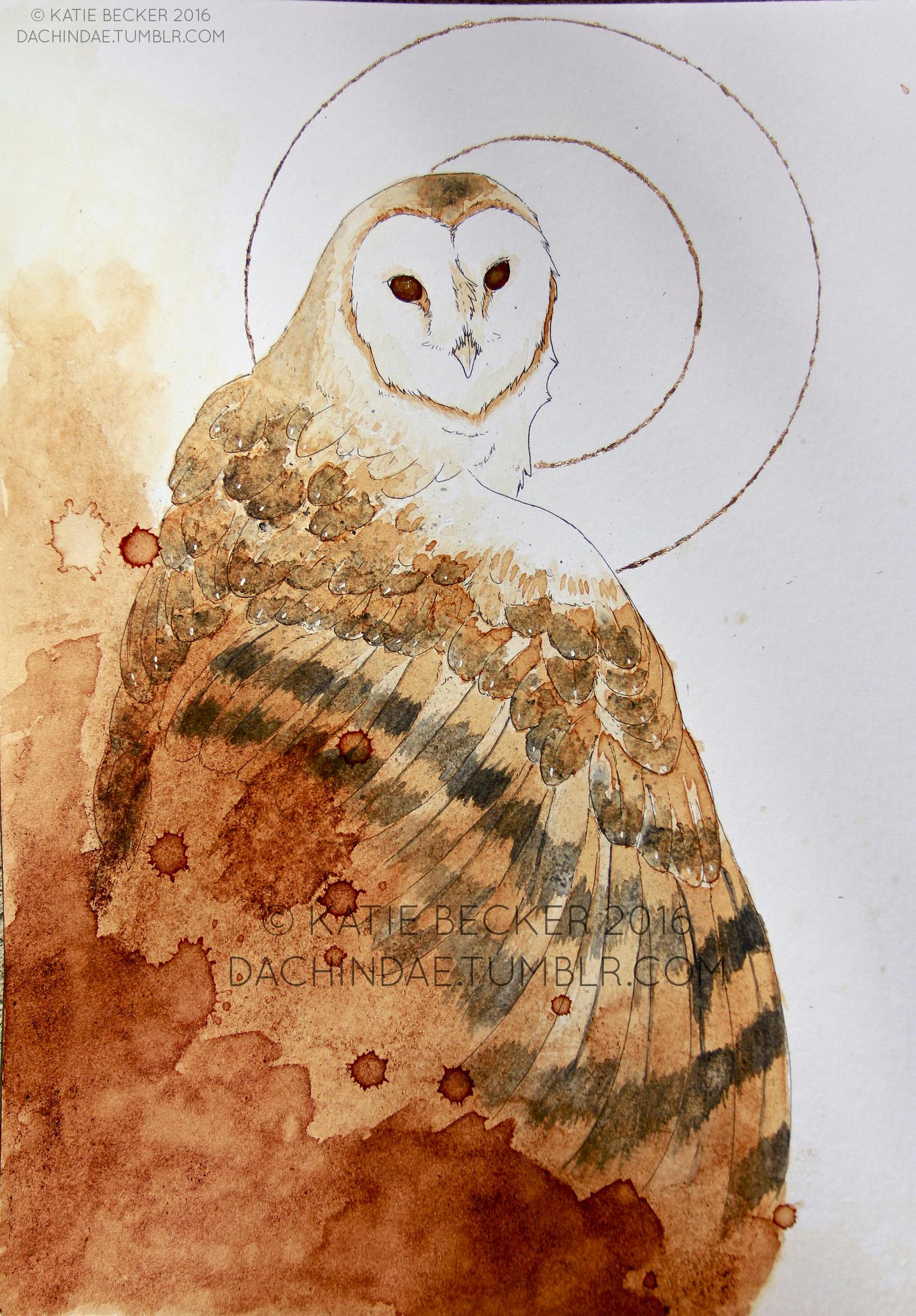 Coffee Owl by Dachindae