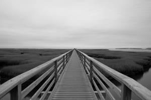 Boardwalk by MarcusKulik