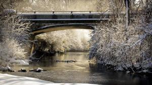 Light Bridge by photorip