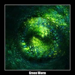 Green Worm by carlx