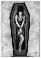 Elvira mistress of the dark by TimGrayson