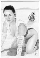 STAR WARS Rey BB-8 by TimGrayson