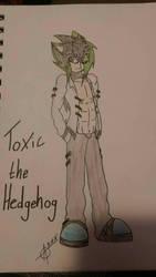 Toxic the Hedgehog by NightMareFuel17