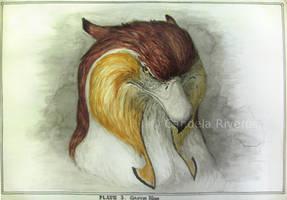 Griffin Head by YemaYema