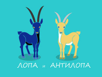ANTELOPE by Shultc