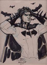 Batman Supanova 2013 by TerryDodson